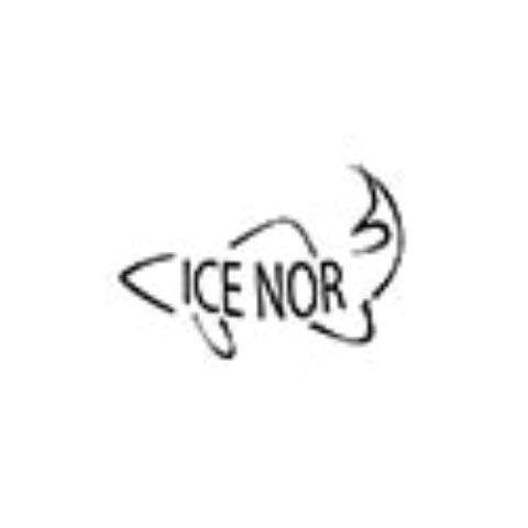 IceNor-logo